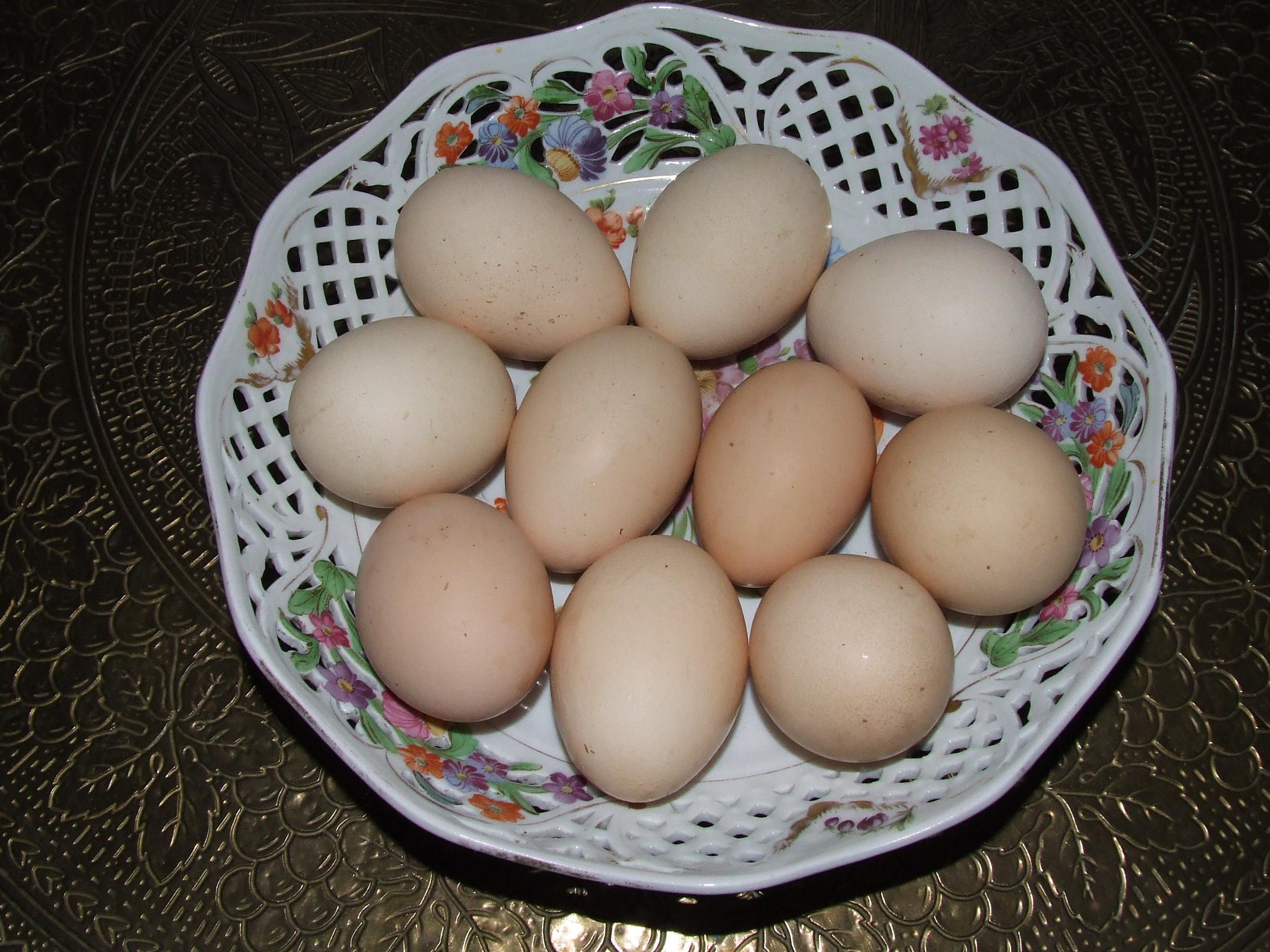 Jaja na zdrowie